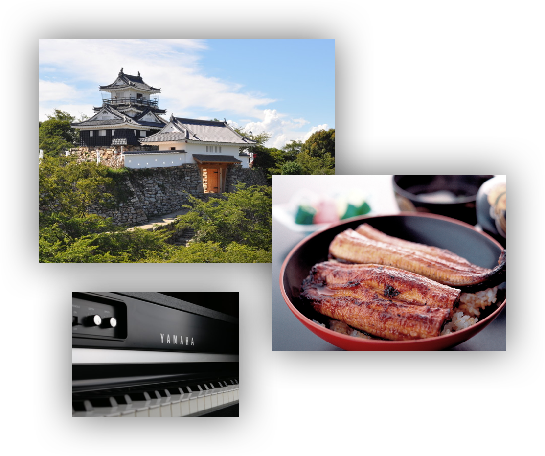 A three part image including 1) Hamamatsu Castle against a blue sky, as seen from outside its stone wall, 2) a rice bowl with grilled eel on top, and 3) the keys of a Yamaha brand piano.